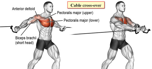 Cable cross-over