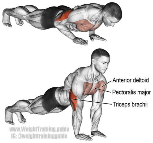 close grip push up