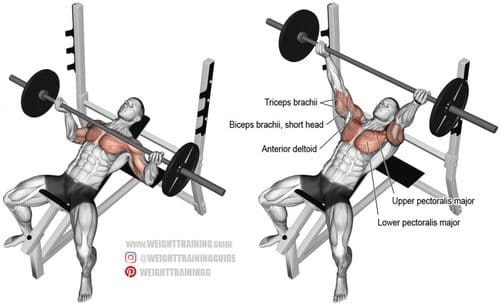Incline Reverse Grip Barbell Bench Press