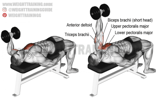 One arm hammer grip dumbbell bench press