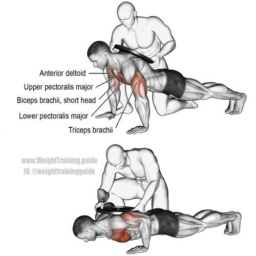 weighted push up