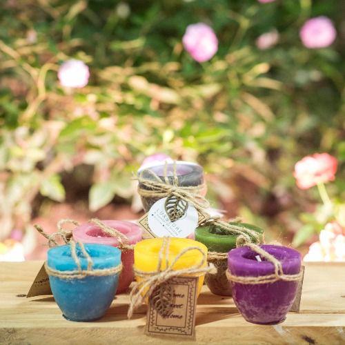 Nến chậu cây Garden Candle size 55 x 50 mm