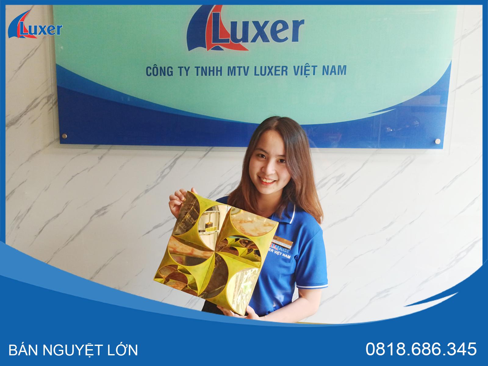 Bán Nguyệt Kết Hợp Inox Luxer