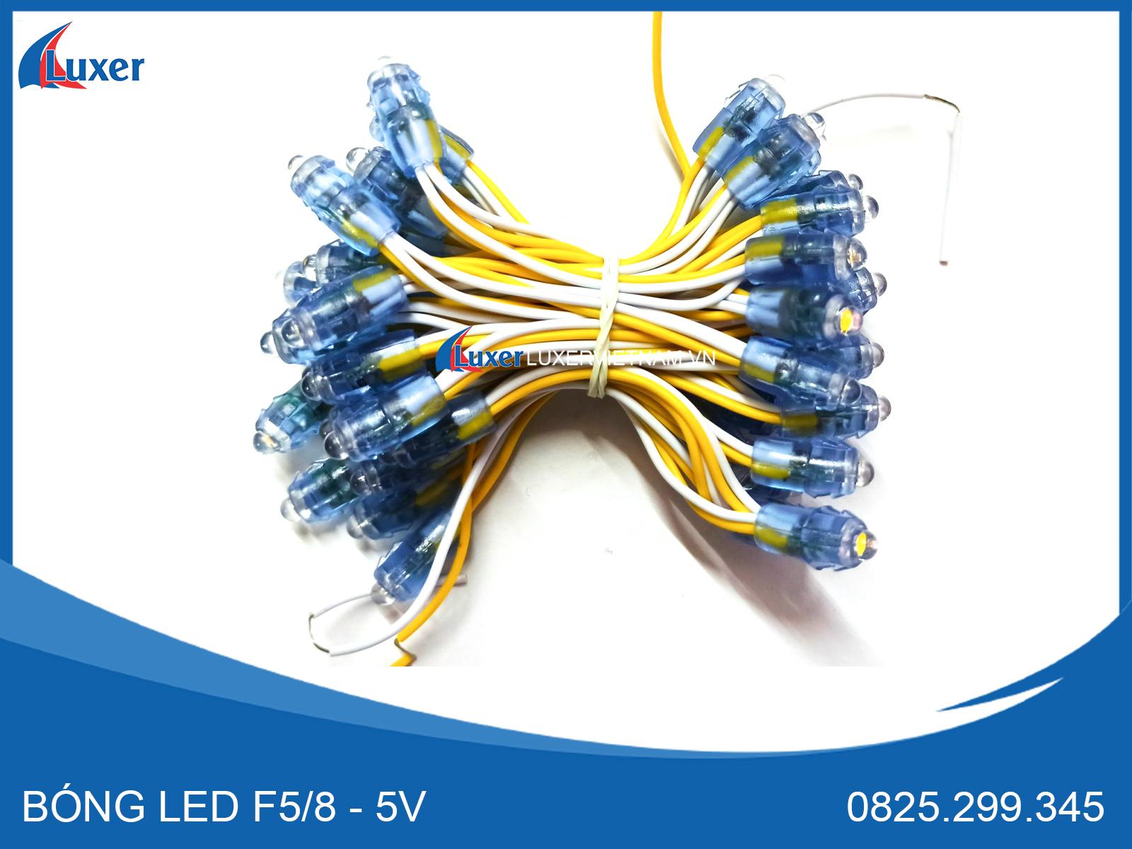 Bóng Led F5/8 - 5V