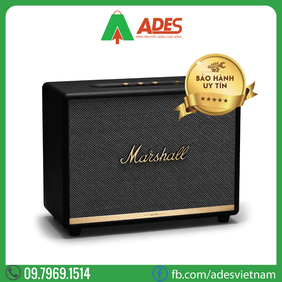 Loa Bluetooth MARSHALL Woburn 2