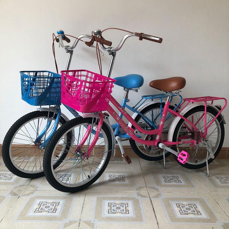 Xe đạp cho bé gái trên 7 tuổi