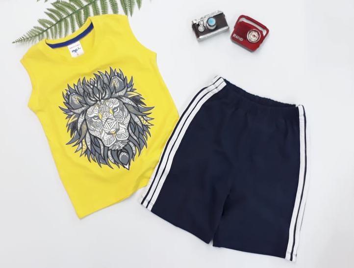 BỘ BT LION