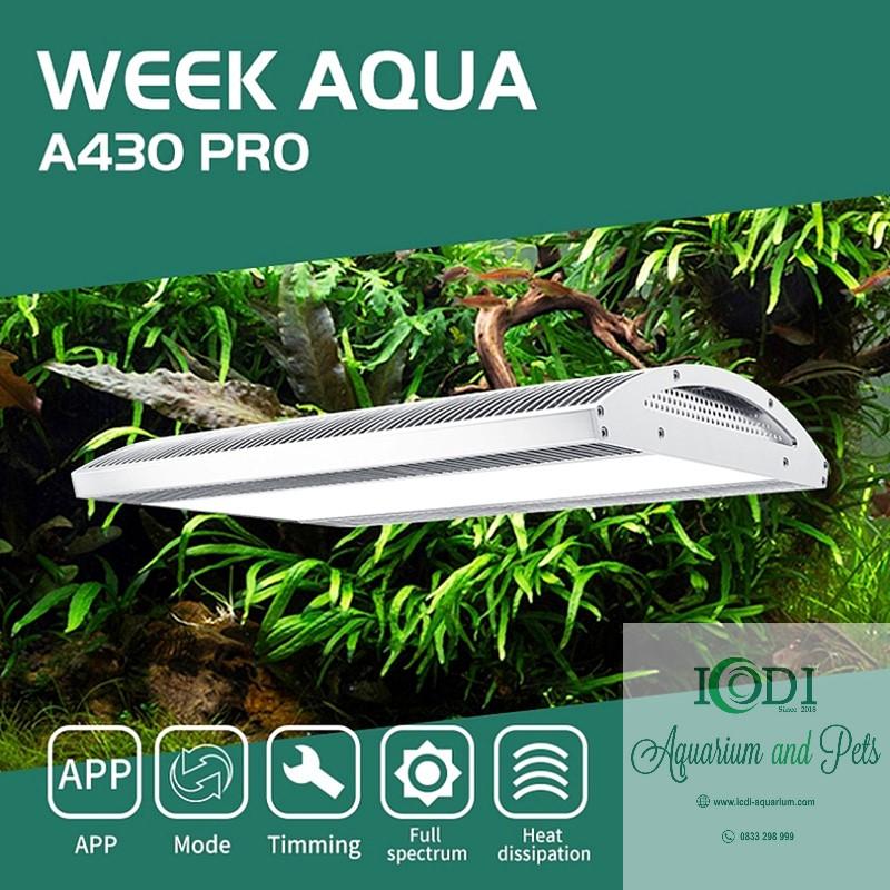 den-thuy-sinh-week-ark-pro-a430