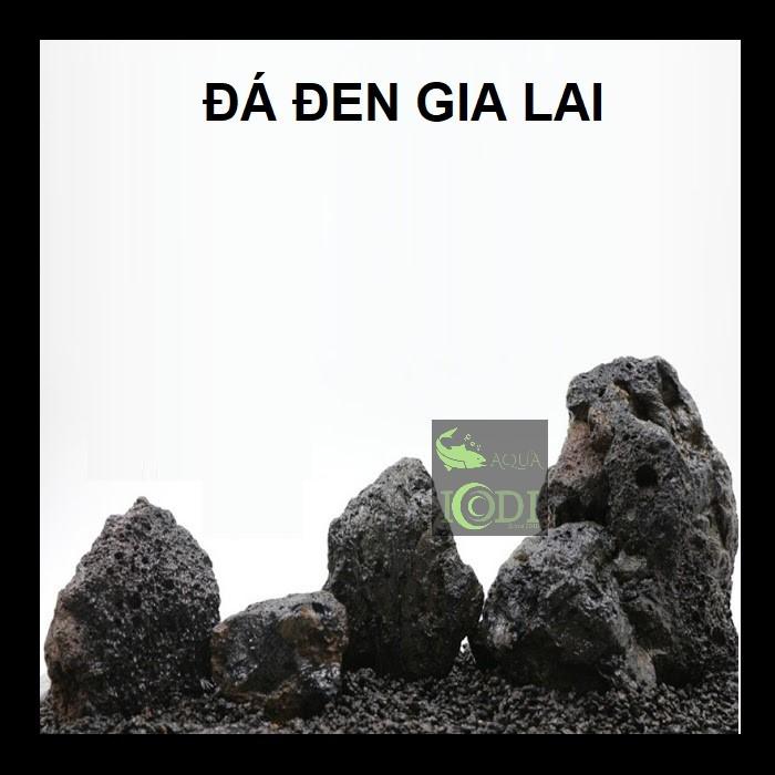 da-den-gia-lai