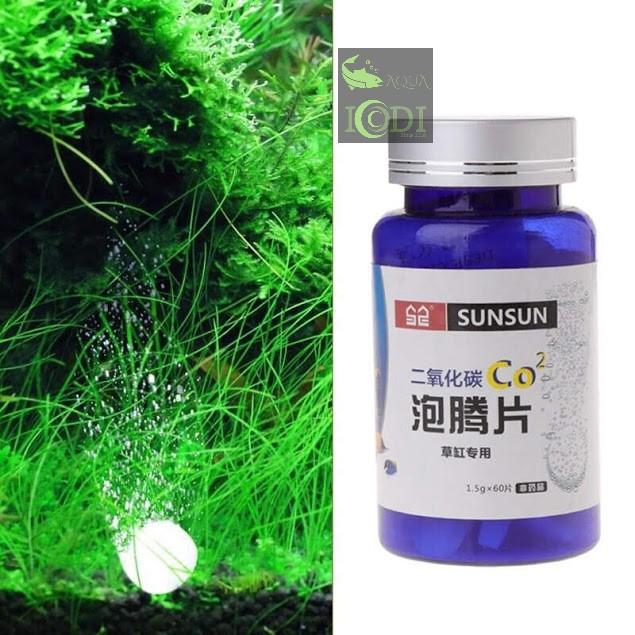sunsun-co2-sc-27