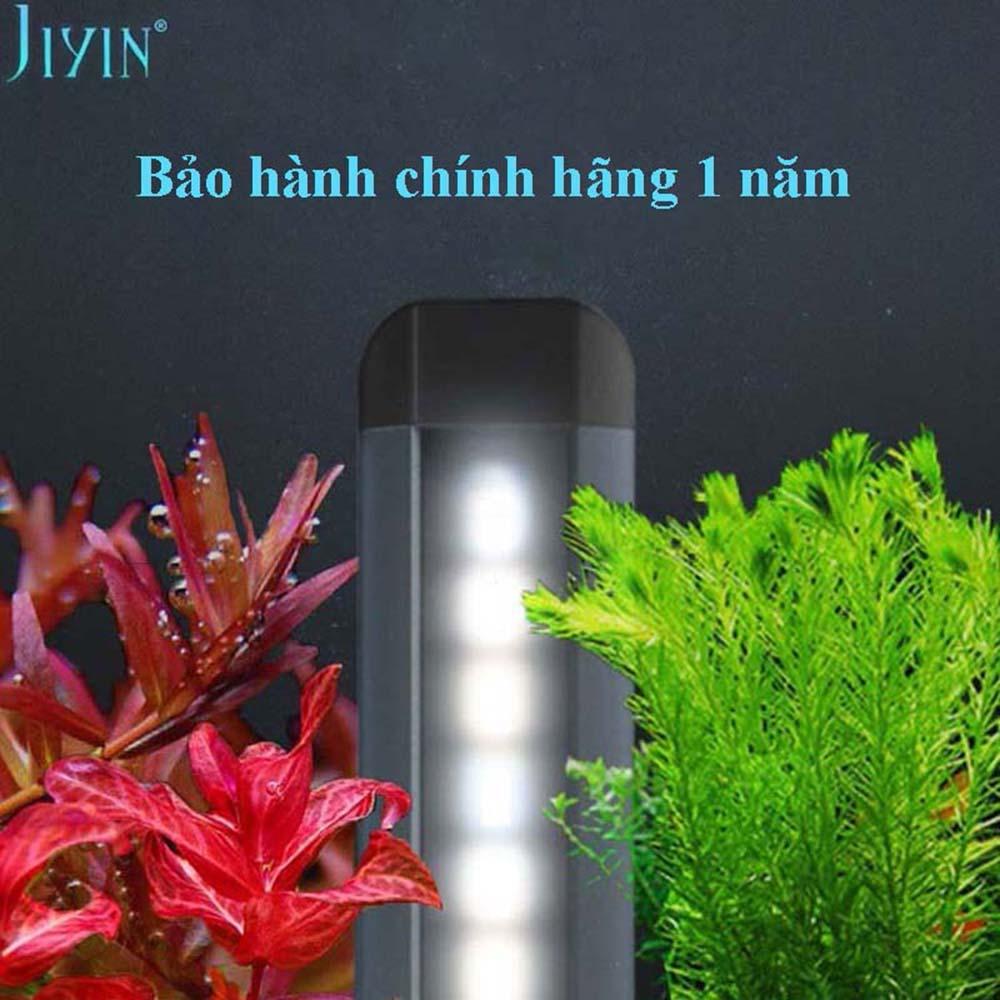 den-jiyin-thuy-sinh
