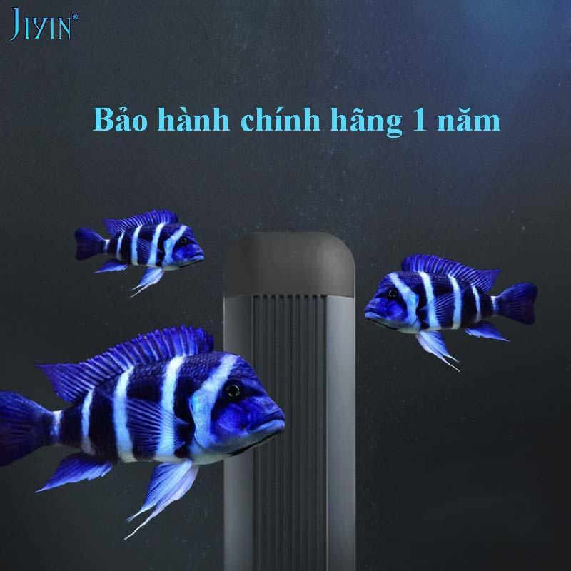 den-jiyin-ca-ali-dau-bo