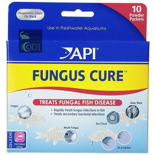 api-fungus-cure