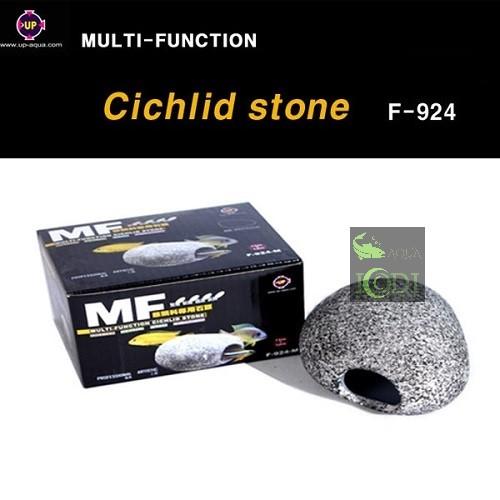 cichlid-stone