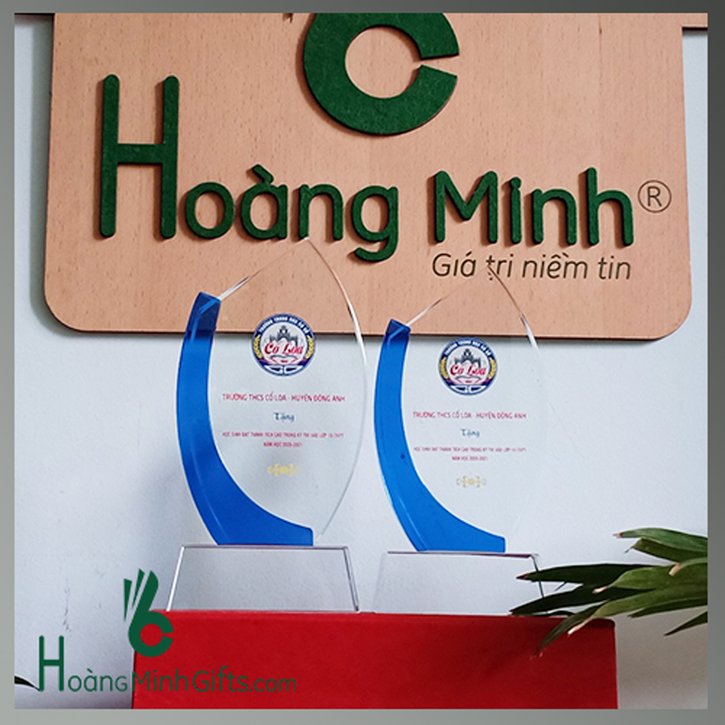 ky-niem-chuong-pha-le-kh-thcs-co-loa-huyen-dong-anh