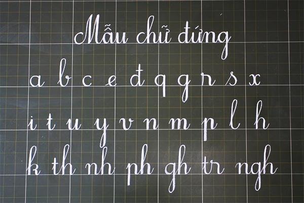 Mẫu chữ đứng dành cho học sinh lớp 1