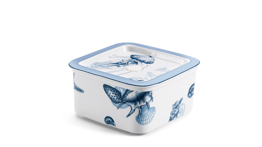 Hộp dưỡng sinh vuông đựng thực phẩm 15 cm + nắp - Đại Dương