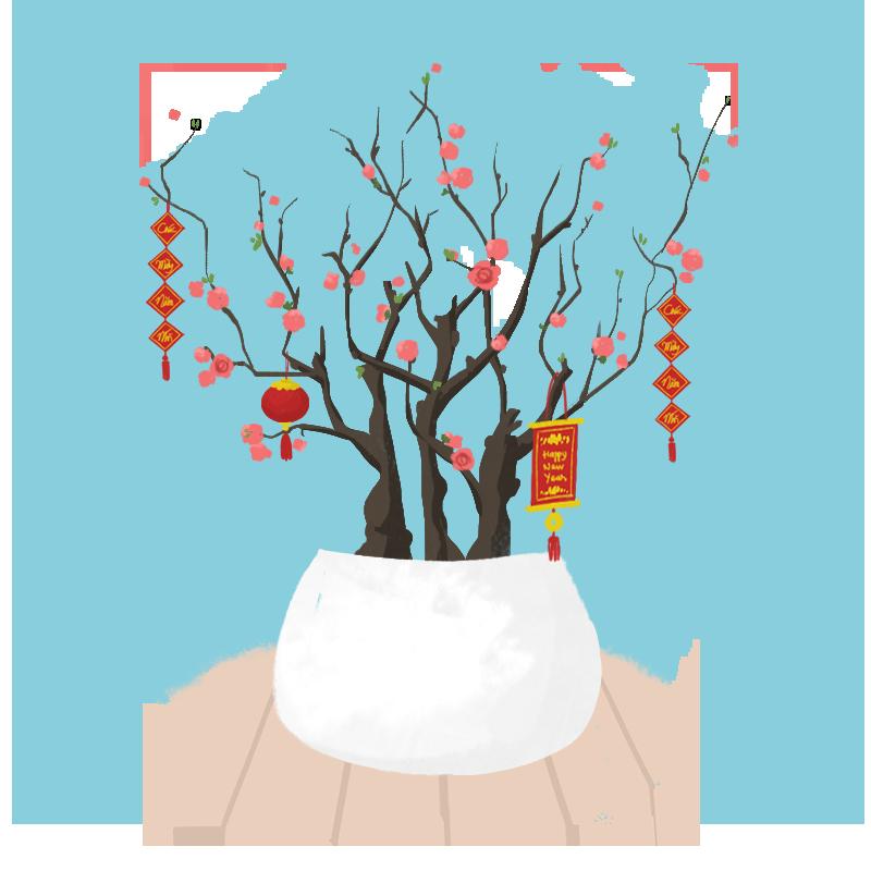 Cây mùa Tết