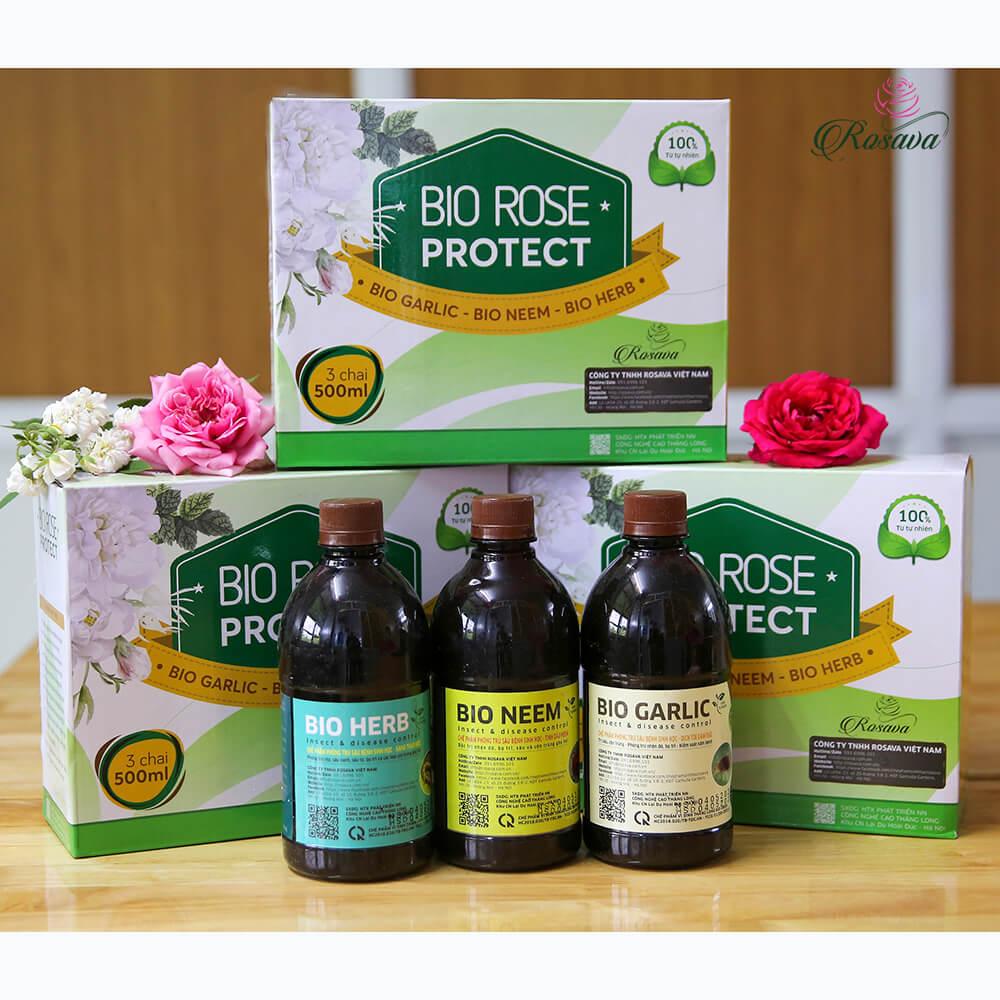 Rose Protect – bộ thuốc trừ sâu thảo mộc cao cấp công nghệ Nhật