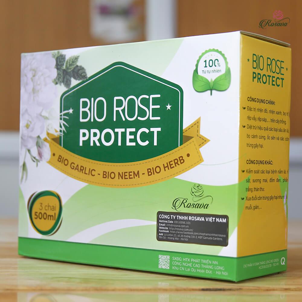 Rose Protect – bộ thuốc trừ sâu sinh học cho hoa hồng cao cấp công nghệ Nhật