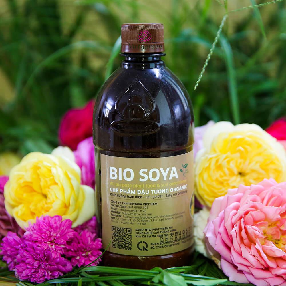Chế phẩm đậu tương Bio Soya – phân bón cây cảnh tốt nhất hiện nay