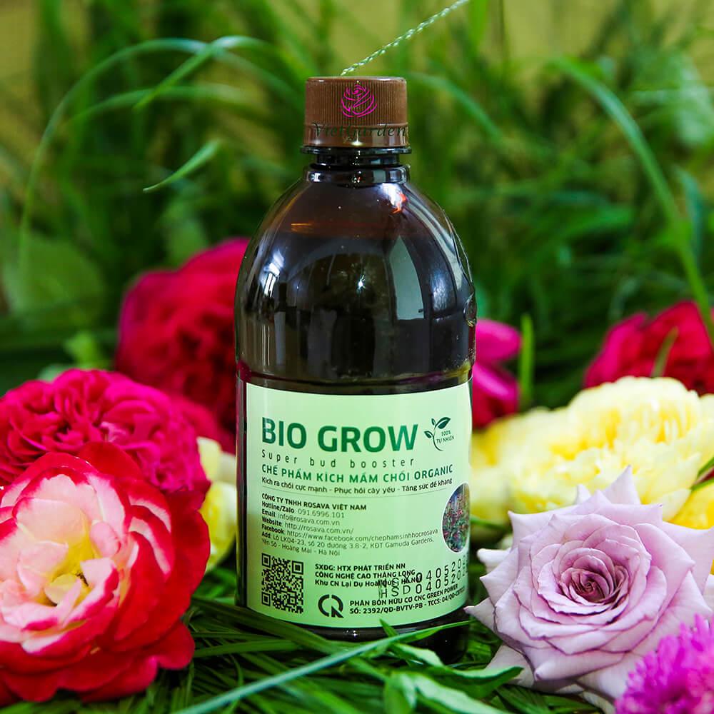 Chế phẩm kích mầm Bio Grow – phân bón cây cảnh cao cấp công nghệ Nhật