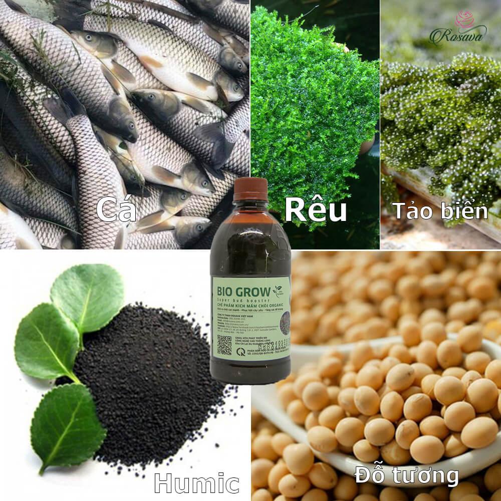 Chế phẩm kích mầm Bio Grow – phân bón vi sinh cao cấp công nghệ Nhật