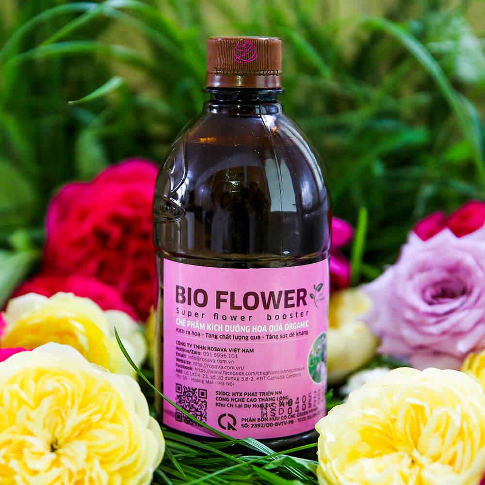 Chế phẩm kích ra hoa Bio Flower – bổ sung dinh dưỡng tuyệt vời cho hoa hồng