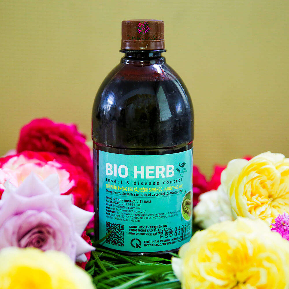 Chế phẩm phòng trừ sâu bệnh sinh học Bio Herb – thuốc sâu thảo mộc hiệu quả cho hoa hồng