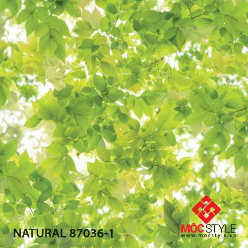 Giấy dán tường Natural 87036-1