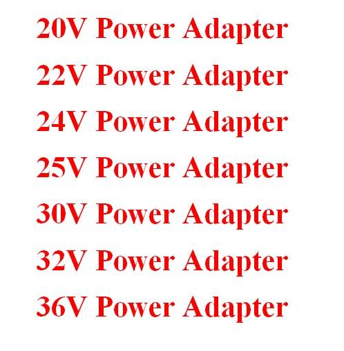 20V 22V 24V 25V 30V 32V 36V Power Adapter