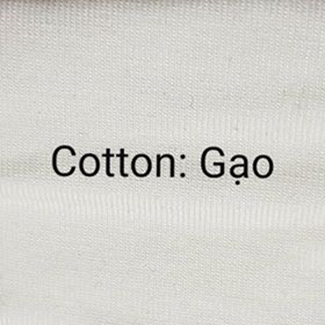 Cotton Gạo