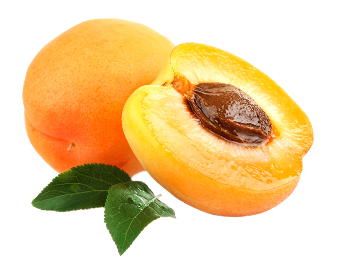 apricot design56