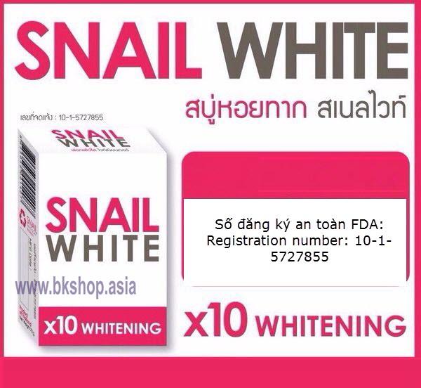 snail 10x