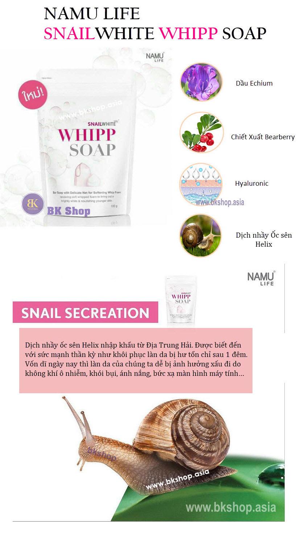 whipp snail (11)