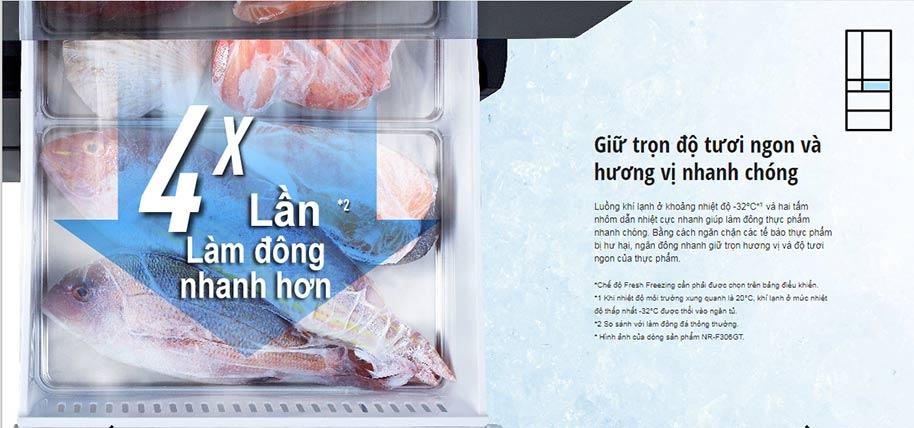 ngăn đông tủ lạnh Panasonic NR-F603GT-N2