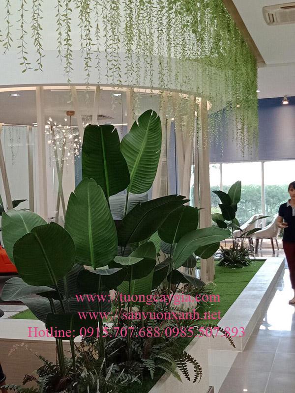 Trang trí không gian xanh văn phòng bằng dây leo rủ