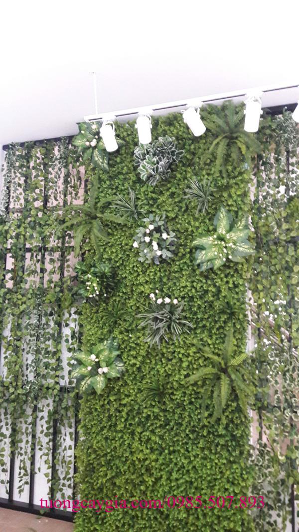 Trang trí dây leo nhà hàng cà phê Văn Quán - Hà Đông