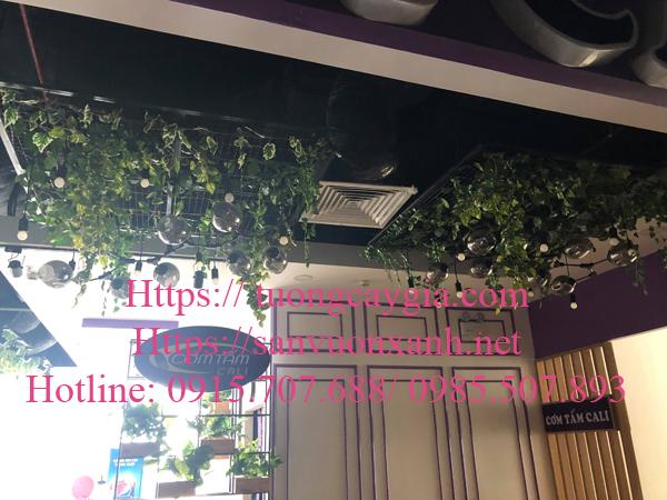 Bán dây nho giả tại Hà Nội