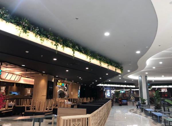 Trang trí toàn bộ hệ thống tường cây giả tại Aeon mall Hà Đông - Hà Nội
