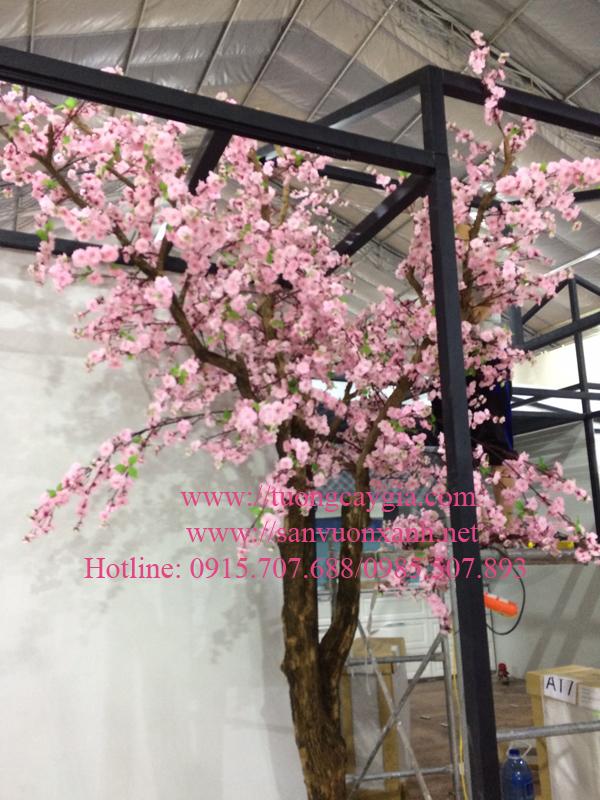Hoa anh đào tại trung tâm hội chợ Vietbuil 2018