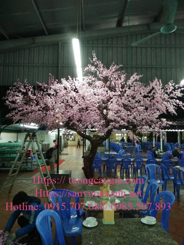Thi công hoa anh đào tại TpHCM