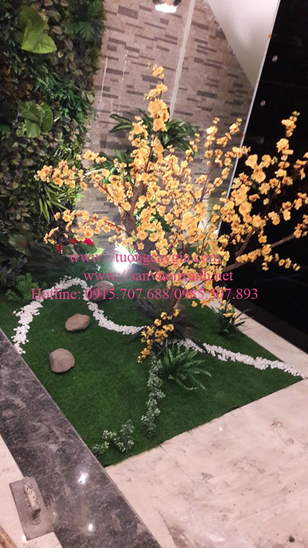 Trang trí tiểu cảnh giếng trời tại Xã đàn 2, Đống Đa, Hà Nội