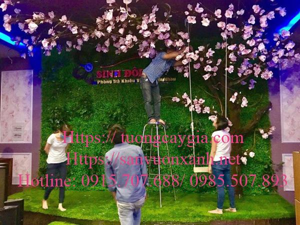 Hoa mộc lan cao cấp tại Phòng trà Sinh Đồng