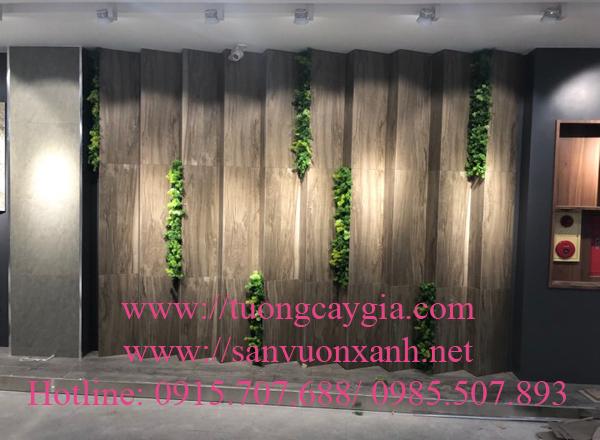 Trang trí cây rong rêu nhân tạo trên  vách tường