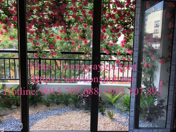 Trang trí ban công hoa hồng leo