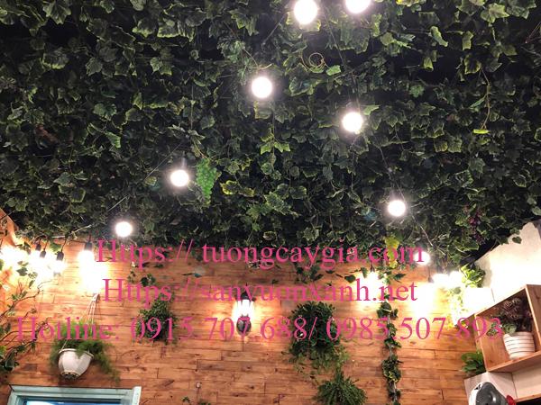 Thi công tiểu cảnh sân thượng tại ngõ 41 Phương Mai, Hà Nội
