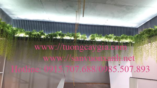 Dây leo giả tại văn phòng Công ty Xhome Việt Nam