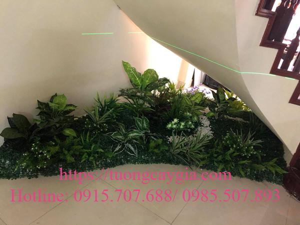 Cây xanh gầm cầu thang tại 50 Vũ Phạm Hàm - Hà Nội