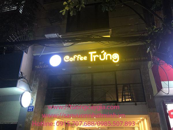 Lắp đặt tường cỏ điểm hoa lá tại nhà hàng Cà phê Trứng - 37 Tân Ấp - Hà Nội